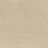 Tapijt Desso Asteranne 50 1002