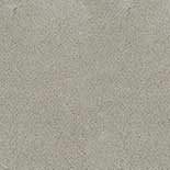 Tapijt Desso Asteranne 50 1101