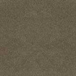 Tapijt Desso Asteranne 50 2941