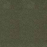 Tapijt Desso Asteranne 50 7922
