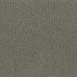 Tapijt Desso Asteranne 50 9504