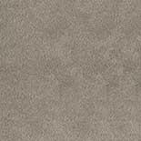 Tapijt Desso Asteranne 50 9536
