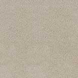 Tapijt Desso Asteranne 50 9538